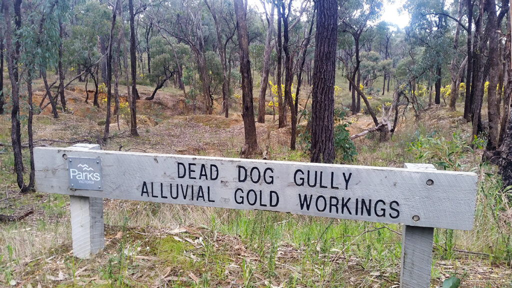 Dead Dog Gully alluvial gold workings